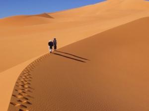 Il Deserto del Monofisismo