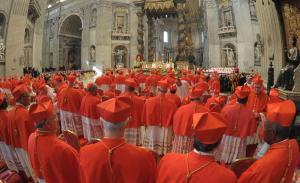 cardinali 7