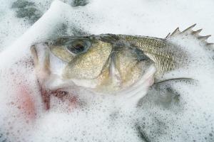 Pesce Affogato