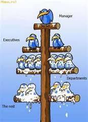 Usual Leadership