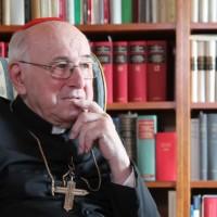 Fra i molti litiganti, noi lettori del Cardinale Brandmüller sul Vaticano II godiamo!